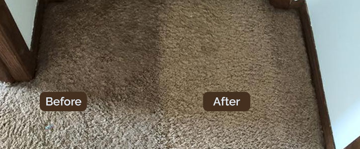 Carpet Cleaning Werrington County