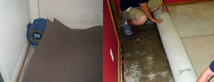 Carpet Flood Water Damage Restoration Blue Haven