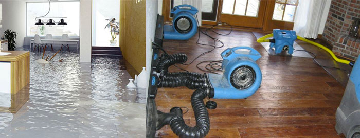 Carpet Flood Water Damage Restoration Edmondson Park