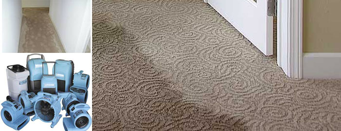 Carpet Flood Water Damage Restoration Lake Haven