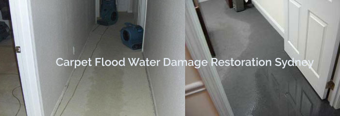 Carpet Flood Water Damage Restoration Services