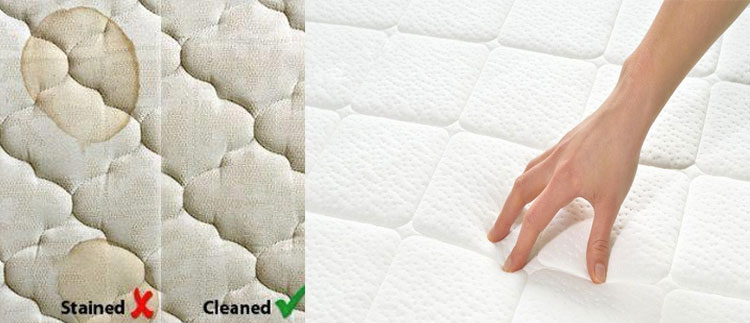 Mattress Cleaning Cambridge Gardens