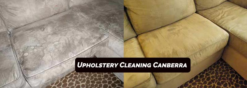 Upholstery Cleaning Bruce