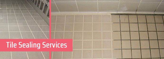 Tile Sealing Services Nayook