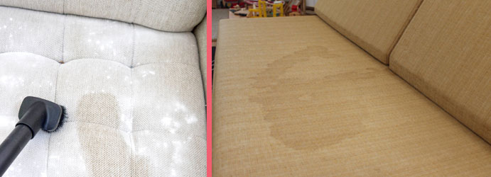 Upholstery Cleaning Old Warburton