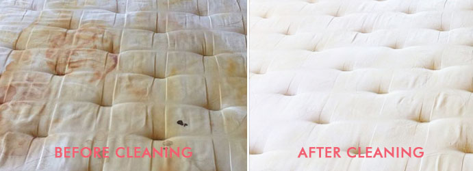 Mattress Cleaning Stain Removal Mangrove Creek