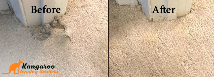 Professional Carpet Repair Services Sinnamon Park