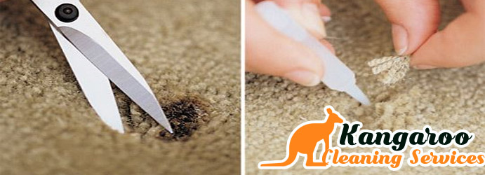 Carpet Burn Repair