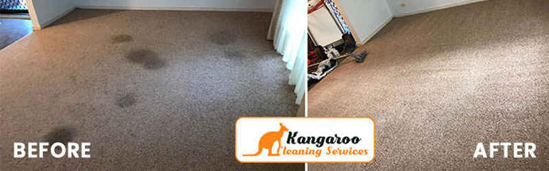 Carpet Sanitization Sadleir