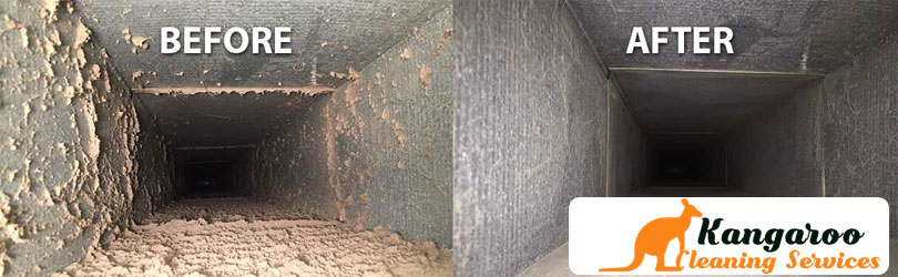 Duct-Cleaning (1)