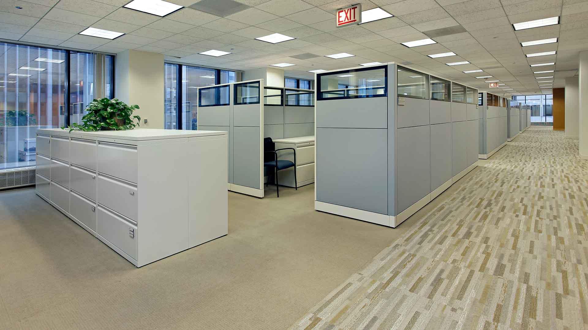 Commercial Carpet Cleaning Bridgeman Downs