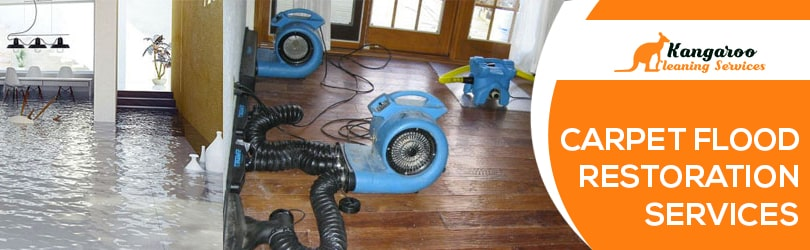 Carpet Flood Restoration Services Sydney