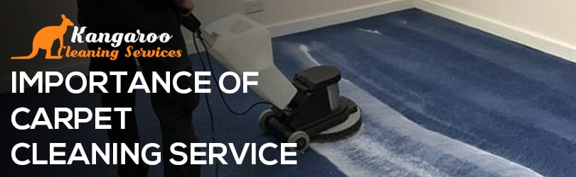 Importance Of Carpet Cleaning Service