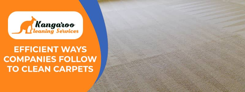 Efficient Ways Companies Follow to Clean Carpets