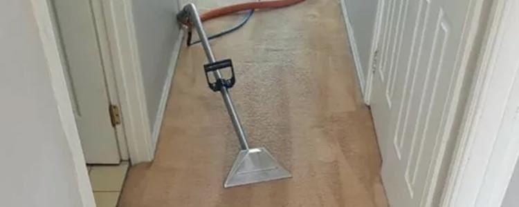 Carpet Cleaning Nundah