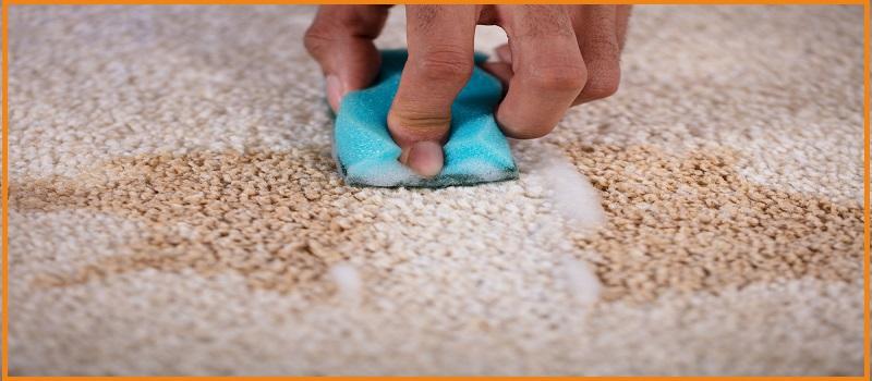 Carpet Scotchgard Stain Protection Yarrabilba