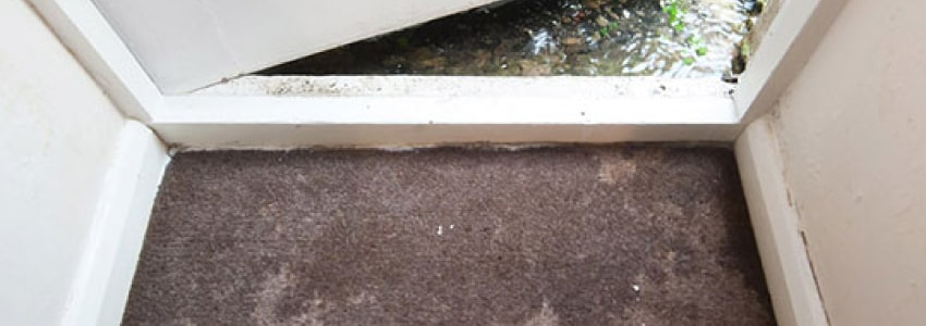 carpet flood water damage restoration sydney